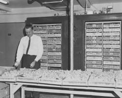 1963-eclosoir